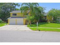 View 4705 Windflower Cir Tampa FL
