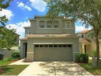 View 11107 Silver Fern Way Riverview FL