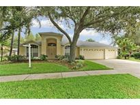 View 9806 Cypress Shadow Ave Tampa FL
