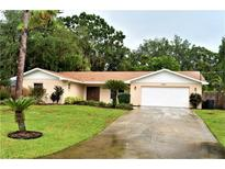 View 18815 Tracer Dr Lutz FL