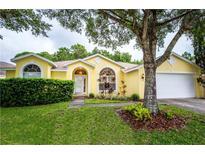 View 8608 Brookway Cir Tampa FL