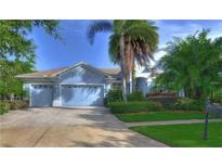 View 20953 Broadwater Dr Land O Lakes FL