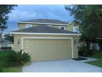 View 18305 Elmhurst Ln Tampa FL