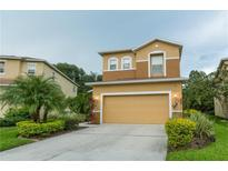 View 2512 Silvermoss Dr Wesley Chapel FL