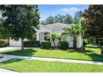 View 7608 Crescent Palm Dr Wesley Chapel FL
