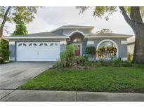 View 508 Beth Ann St Valrico FL