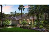 View 416 Pine Bluff Dr Lutz FL