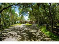 View 11279 Knights Griffin Rd Thonotosassa FL