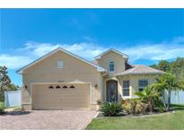 View 19305 Red Sky Ct Land O Lakes FL