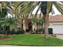 View 12905 Cinnimon Pl Tampa FL