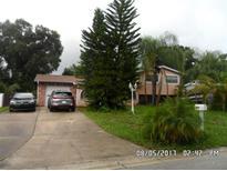 View 404 Elm Tree Ln Brandon FL