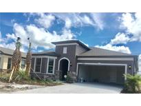 View 7954 Olive Brook Dr Wesley Chapel FL