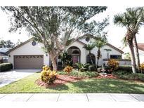 View 15814 Hampton Village Dr Tampa FL