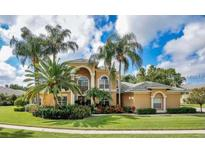 View 12018 Brewster Dr Tampa FL