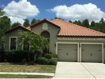 View 8250 Dunham Station Dr Tampa FL