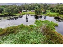 View 1208 Memory Ln Lutz FL