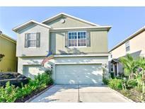 View 8927 Turnstone Haven Pl Tampa FL