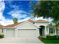 View 10636 Weeping Elm Bnd Land O Lakes FL