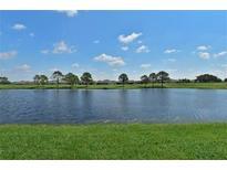 View 981 Villeroy Greens Dr # 0 Sun City Center FL