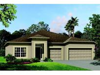 View 9705 Cabernet Ave Seffner FL