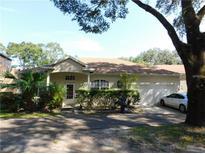 View 2606 Fiddlestick Cir Lutz FL
