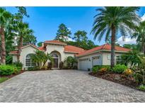 View 9523 Tree Tops Lake Rd Tampa FL