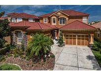 View 14746 San Marsala Ct Tampa FL