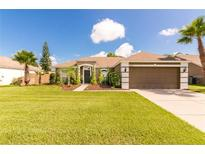 View 14825 Redcliff Dr Tampa FL