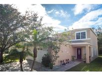 View 10444 Blackmore Dr Tampa FL