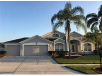 View 10344 Meadow Crossing Dr Tampa FL