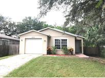 View 6814 Lyman Ave Tampa FL