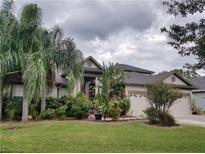 View 9325 Mangrove Ct Tampa FL
