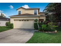 View 30921 White Bird Ave Wesley Chapel FL
