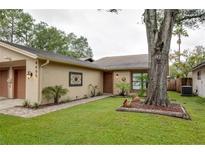 View 4405 Rockcrest Cir Tampa FL