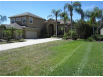 View 10532 Cory Lake Dr Tampa FL