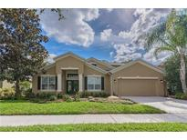 View 5805 Browder Rd Tampa FL