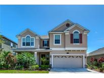 View 19225 Early Violet Dr Tampa FL