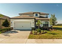 View 12302 Thicket Wood Dr Riverview FL