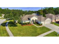 View 12541 Leatherleaf Dr Tampa FL