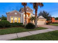 View 10436 Canary Isle Dr Tampa FL
