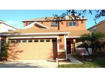 View 20625 Great Laurel Ave Tampa FL