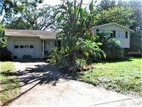 View 213 Terrace Dr Brandon FL