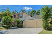 View 16118 Colchester Palms Dr Tampa FL