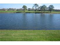 View 973 Villeroy Greens Dr # 46 Sun City Center FL