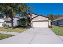 View 31239 Chatterly Dr Wesley Chapel FL