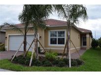 View 4928 Sandy Glen Way Wimauma FL