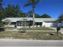View 2513 Greenmoor Pl Tampa FL