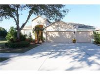 View 9429 Laurel Ledge Dr Riverview FL