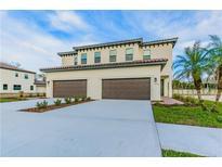 View 13018 Sanctuary Village Ln Tampa FL