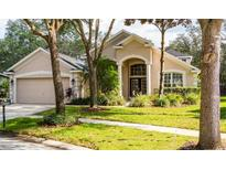 View 6133 Whimbrelwood Dr Lithia FL